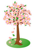 Spring flowering fruit tree, vector  Royalty Free Stock Images