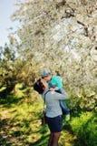Spring flowering garden Stock Photos
