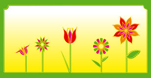 Spring flowers. Of decoration colors Stock Images