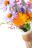 Spring flowers. Photo shot of spring flowers stock photography