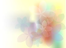 Spring flowers. With place for your text Royalty Free Stock Images