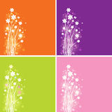Spring Flowers. Four designs and colors of spring flowers Stock Photos