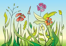 Spring Flowers. Illustrated spring flowers and grasses Stock Photography