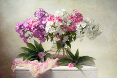 Spring flowers. Beautiful spring flowers phlox in a vase Stock Photography