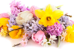 Spring flowers. On the white background Stock Photography