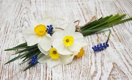 Free Spring Flowers Royalty Free Stock Images - 40720149