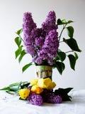 Spring Flowers Royalty Free Stock Photos