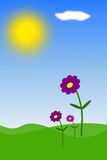 Spring flowers. Three purple flowers growing towards the sun on a nice spring day royalty free illustration