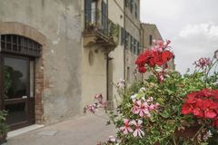 Spring flowers against buildings in Tuscany,  Italy Royalty Free Stock Image