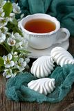 Spring flowers background with tea cup Stock Image