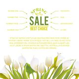 Spring flowers backround with text lettering. Stock Image