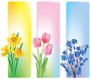 Spring flowers banners Stock Photos
