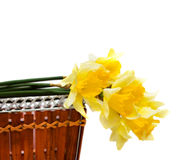 Spring flowers in basket Royalty Free Stock Photo
