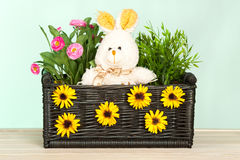 Spring flowers in the basket Royalty Free Stock Photo
