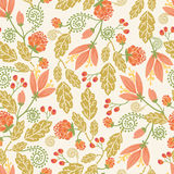 Spring flowers and berries seamless pattern Stock Images