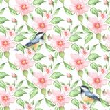 Spring flowers and birds. Floral seamless pattern 6. Spring flowers and birds. Hand drawn watercolor floral seamless pattern Stock Photo