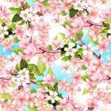 Spring flowers blossom - sakura, cherry, apple and blue sky. Floral seamless pattern. Watercolor Stock Photos