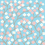 Spring Flowers On Blue Background Royalty Free Stock Photography
