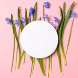 Spring flowers with blue petals and gear wheel shaped blank paper card on pastel pink background. Spring nature concept. Flat lay stock photos