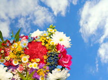 Spring flowers on blue sky Stock Photography