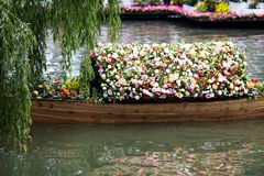 Spring Flowers in boat Stock Photos
