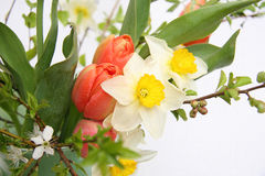 Spring flowers bouquet Stock Images