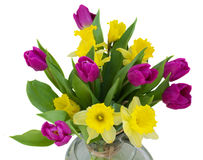 Spring flowers bouquet. Bouquet of spring flowers - purple tulips and yellow daffodils Royalty Free Stock Photo
