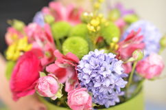 Spring flowers bouquet. Bouquet of colorful spring flowers over a white background Stock Image