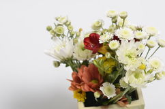Spring flowers bouquet. Bouquet of colorful spring flowers over a white background Royalty Free Stock Images