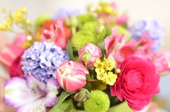 Spring flowers bouquet. Bouquet of colorful spring flowers over a white background Stock Photos