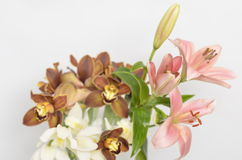 Spring flowers bouquet. Bouquet of colorful spring flowers over a white background Stock Images