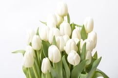 Spring flowers bouquet. Bouquet of colorful spring flowers over a white background Stock Photo