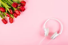 Spring flowers, bouquet of red tulips on pink background with white headphones. Top view to the music. Around it is quiet, inside