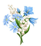 Spring flowers bouquet. Vector illustration. Royalty Free Stock Image