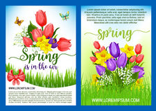 Spring flowers bouquets vector greeting posters. Hello Spring greeting poster vector holiday design of springtime flowers. Blooming bouquets and wreath of tulips Stock Photo