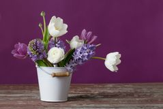 Spring flowers in bucket on pink background Royalty Free Stock Photo