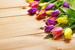 Spring Flowers bunch at wood floor texture. Beautiful Tulips bou Stock Photos