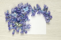 Spring flowers with butterflies and empty paper sheet on white rustic table. Springtime Hyacinthus flowers, with butterflies Papilio machaon, Plebejus argus and Royalty Free Stock Photography
