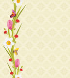 Spring flowers and butterflies on the seamless ornamental background Royalty Free Stock Photos