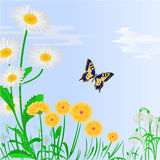 Spring flowers and butterfly blue background vector Stock Photography