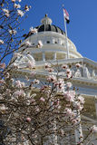 California State Capitol Stock Photos