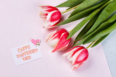 Spring flowers and card. Stock Photos