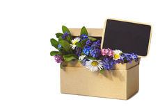 Spring flowers in cardboard chest and blank blackboard Royalty Free Stock Photo