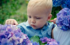 Spring flowers. Childhood. Childrens day. Small baby boy. New life concept. Spring holiday. Summer. Mothers or womens. Day. Little boy at blooming flower. Hot royalty free stock image