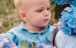 Spring flowers. Childhood. Little boy at blooming flower. Summer. Mothers or womens day. Childrens day. Small baby boy. New life concept. Spring holiday. I am stock photography