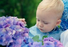 Spring flowers. Childhood. Summer. Mothers or womens day. Childrens day. Small baby boy. New life concept. Spring. Holiday. Little boy at blooming flower stock photography