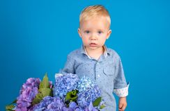 Spring flowers. Childhood. Summer. Mothers or womens day. Childrens day. Small baby boy. New life concept. Spring. Holiday. Little boy at blooming flower. Wow royalty free stock image