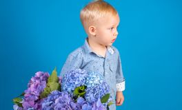 Spring flowers. Childhood. Summer. Mothers or womens day. Childrens day. Small baby boy. New life concept. Spring. Holiday. Little boy at blooming flower royalty free stock photography