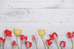 Spring flowers composition for postcard. Red, yellow tulips and Royalty Free Stock Image