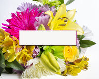 Spring Flowers With Copy Space Royalty Free Stock Photography